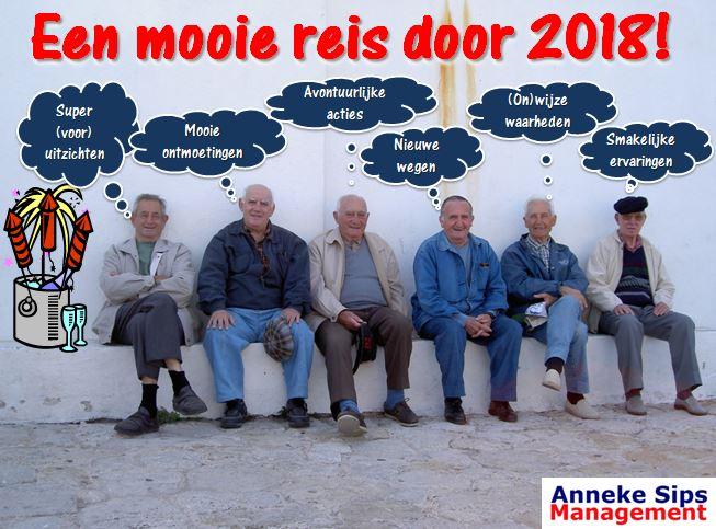 Een mooie reis door 2018 Anneke Sips Management